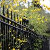 100 railing flowers