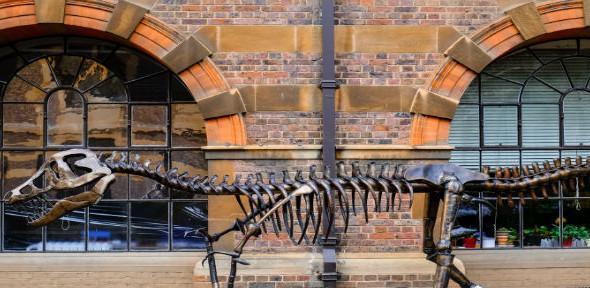 Jurassic cam 590x288